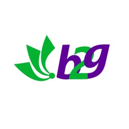 Bridges to Goodness (B2G) Projects logo